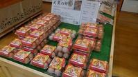 大寒の卵販売中!!! - げんきの郷の日々