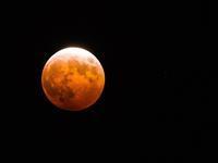 獅子座の満月。そして月蝕。 - プランテプラネットのブログ。ここからもうちょっと