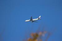 寒いですが空を飛ぶ飛行機 - 平凡な日々の中で