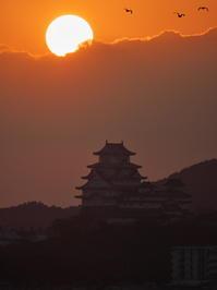 夕日と姫路城 - とりあえず撮ってみました