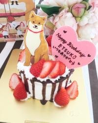 柴犬ケーキ - HAPPY FIELD