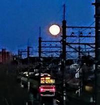満月 - BOSSのひとりごと