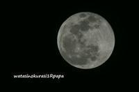 月とクッキー♪ - わたしのくらし