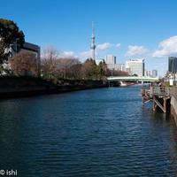 無題・・・・東京スカイツリー - 風に吹かれて