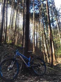 昨日の定休日は西多摩のトレイルへgo! - 東京都世田谷 マウンテンバイク&BMXの小川輪業日記