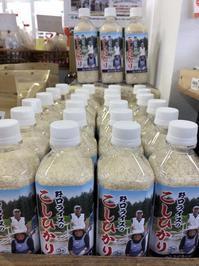 大洗まいわい市場   美味しいお米👀 - わいわいまいわい-大洗まいわい市場公式ブログ