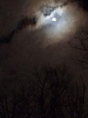 皆既月食Super Blood Wolf Moon - しんしな亭 in シンシナティ ブログ