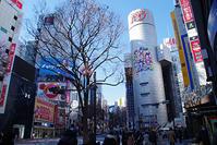 1月22日㈫の109前交差点 - でじたる渋谷NEWS