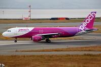 関西国際空港での撮影 その3 スカイデッキからの撮影(2) - 南の島の飛行機日記