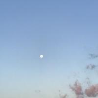 朝の月と太陽 - ドコカ遠くと日々のアシモト