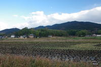 明日香村飛鳥 - ぶらり記録:2 奈良・大阪・・・