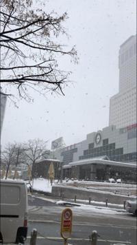 指長効果 - 札幌駅近くのジェルネイルサロン☆nailedit:ネイルエディット