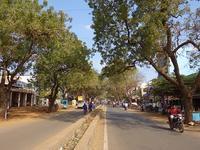 南インドの美食の街、カライクディでヴェジバーガー - kimcafeのB級グルメ旅