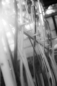 弓道 - 休日PHOTOブログ