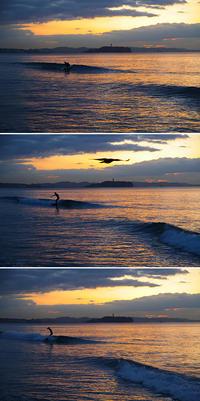 2019/01/23(WED) 穏やかな海辺で.........。 - SURF RESEARCH