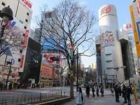 1月23日㈬の109前交差点 - でじたる渋谷NEWS