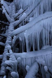 三十槌の氷柱④~凍てつく樹氷~ - 風の彩り-2
