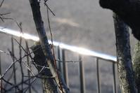 足立区の街散歩363 - 一場の写真 / 足立区リフォーム館・頑張る会社ブログ