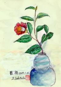 孝さん - 清治の花便り