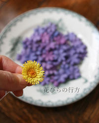 春を待ちながら ~ スミレとタンポポの制作 - 布の花~花びらの行方 Ⅱ