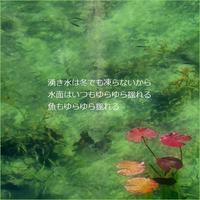 湧き水 - m*photopoem