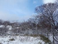 吹雪の女正月 - ゆうゆうタイム