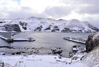 スノーシューで澄海岬 - 礼文島★ハナとわたし