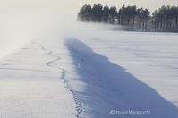 川霧の朝 - ekkoの --- four seasons --- 北海道