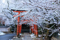 雪の京都竹中稲荷の雪の華 - 花景色-K.W.C. PhotoBlog