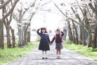 2019/2月 撮影可能なお日にち - mamayphoto_yun
