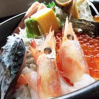 三浦の彩り海鮮丼魚市場食堂18.12.08 11:09 - スナップ寅さんの「日々是口実」