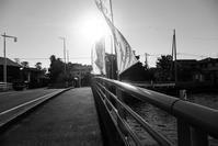 光/影 - 長い木の橋