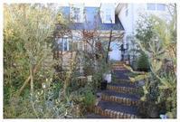 庭造りを応援!!10%OFFキャンペーンしています! - natu     * 素敵なナチュラルガーデンから~*     福岡で庭造り、外構工事(エクステリア)をしてます