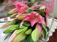 お誕生日の花束 - ユリ 百合 ゆり 魚沼農場の日々