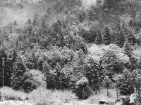 雪景色その5 - Illusion on the Borderline  II @へなちょこ魔術師