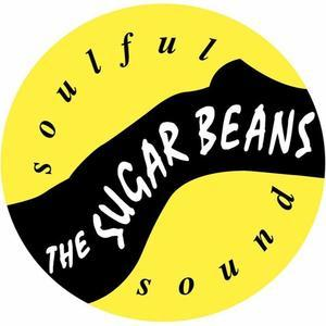 The Sugarbeans 復活します! - THE SUGARBEANS