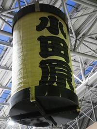 日本古生物学会第168回例会(1) - ふぉっしるもしてみむとてするなり