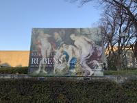 国立西洋美術館『ルーベンス展ーバロックの誕生ー』へ - a day in the Life