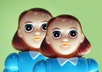 Shining Twins OG - 下呂温泉 留之助商店 入荷新着情報