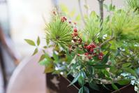 お正月の花飾り2 - + anything goes +