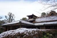 「雪の詩仙堂から圓光寺へ」 - ほぼ京都人の密やかな眺め Excite Blog版