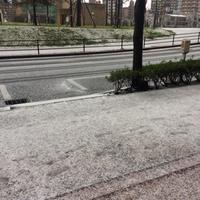 雪! - サン建築工房:エコショップブログ