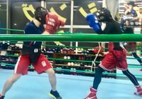 4回戦ボーイ - 本多ボクシングジムのSEXYジャーマネ日記