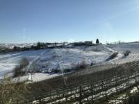 雪の溶け具合で良い畑がわかる - マダムNのTOKYO‐LIFE