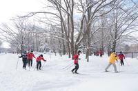 やはり美しい中島公園・続き - 柳に雪折れなし!Ⅱ