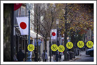 平成最後の年末年始を振り返る(2)〜年末年始の番組 - 前田画楽堂本舗