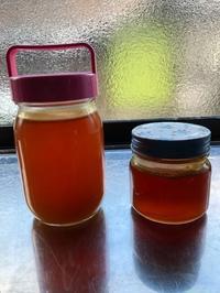 日本蜜蜂のブログ始めました。 - カピパラと日本蜜蜂