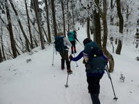 樹氷林を登る綿向山 (1,110M)   登頂編 NO1 - 風の便り