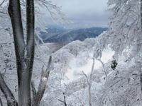 樹氷林を登る綿向山 (1,110M)   登頂 編  NO2 - 風の便り