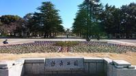 鶴舞公園へ行ってきました! - 愛知・名古屋を中心に活動する女性ギタリストせきともこのブログ